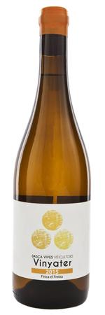 Dasca Vives Winery Vinyater